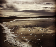 cropped-dillon-beach.png
